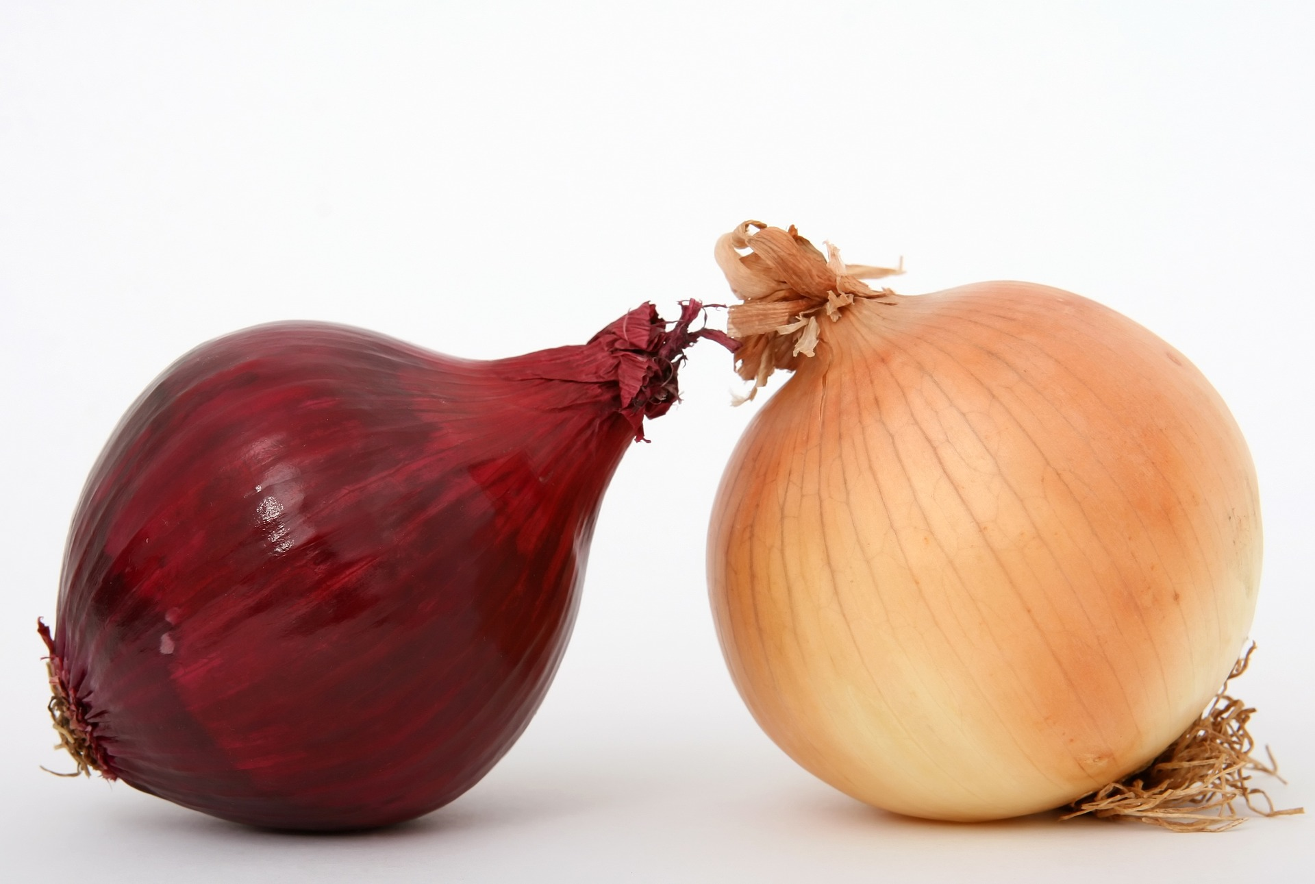 a red onion next to a yellow onion